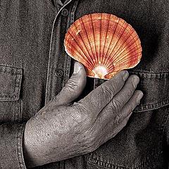 Man of the shells - Nicolas Khoury - L'uomo delle conchiglie // Photo:©Richard Khoury